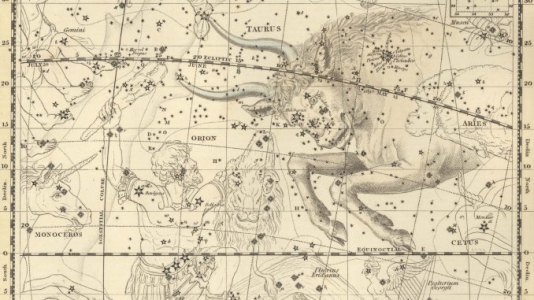 Taurus the Bull With Orion